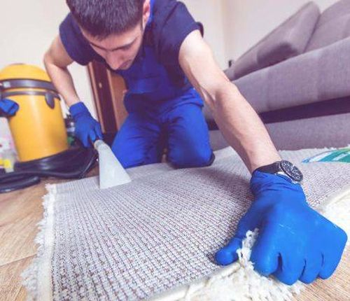 professional carpet cleaners northampton