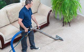 professional carpet cleaning Northamton